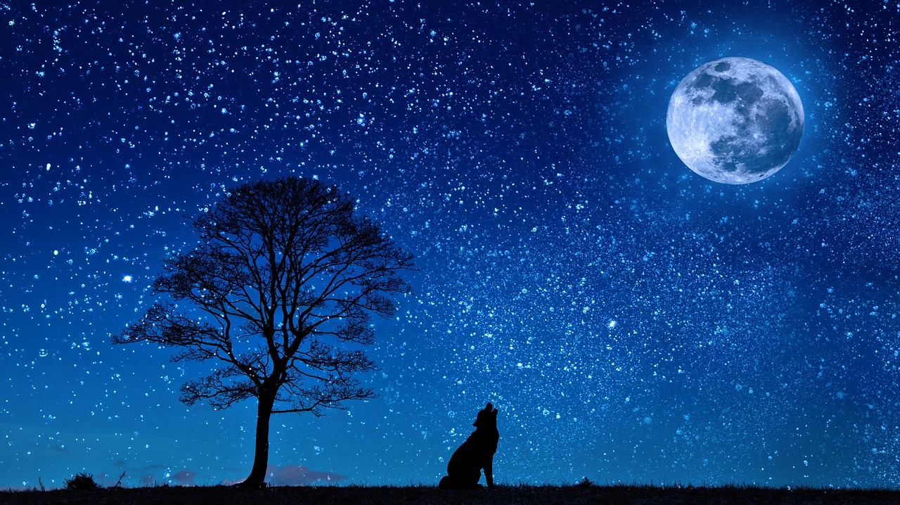 満月の日は星空が見えにくいのか?