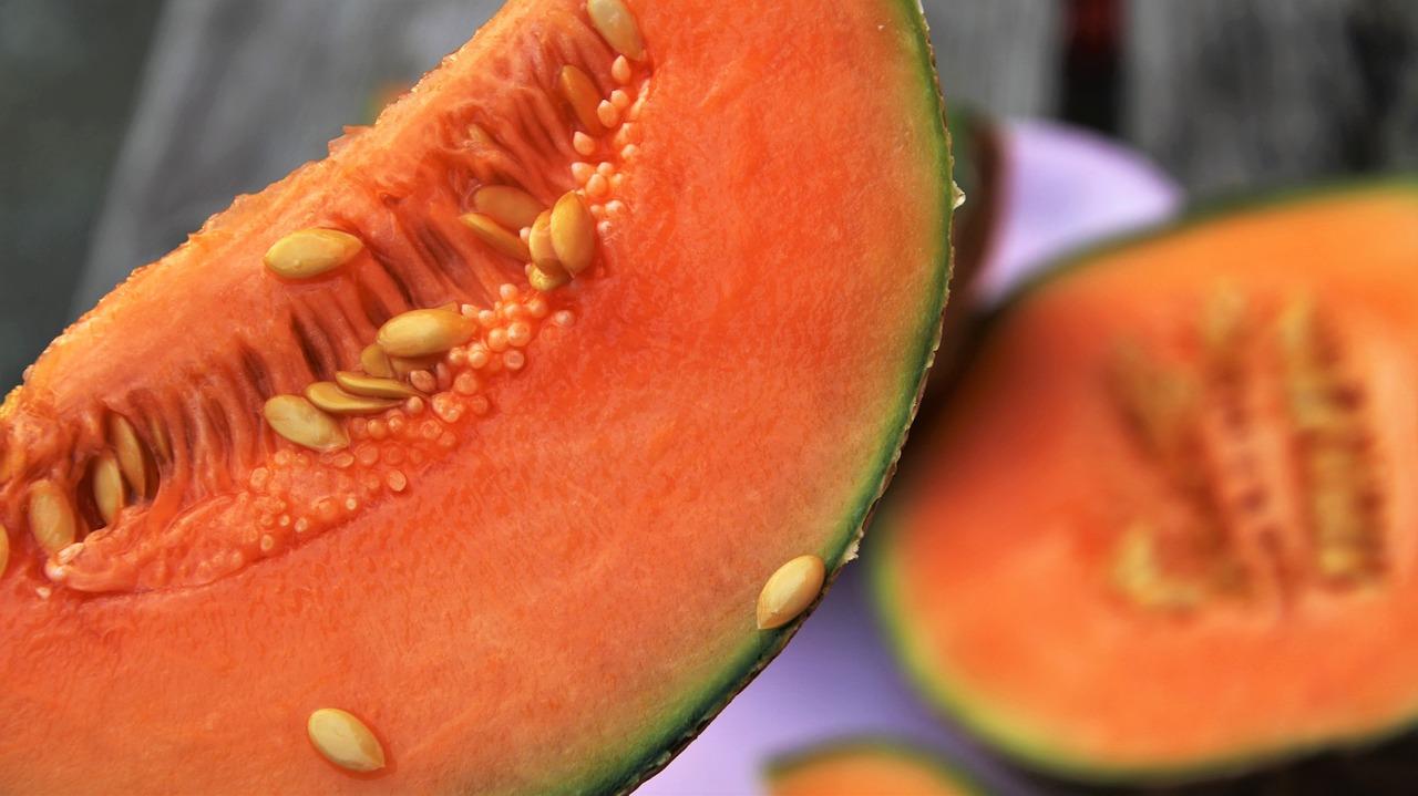 家庭菜園でメロンを作りたい!どの種類が育てやすいの?