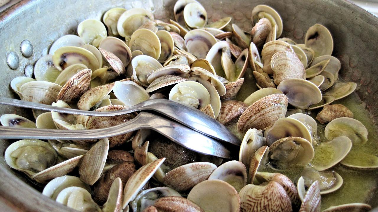 ホンビノス貝の保存方法とは?冷蔵や冷凍で保存できるの?期間はどれくらい?