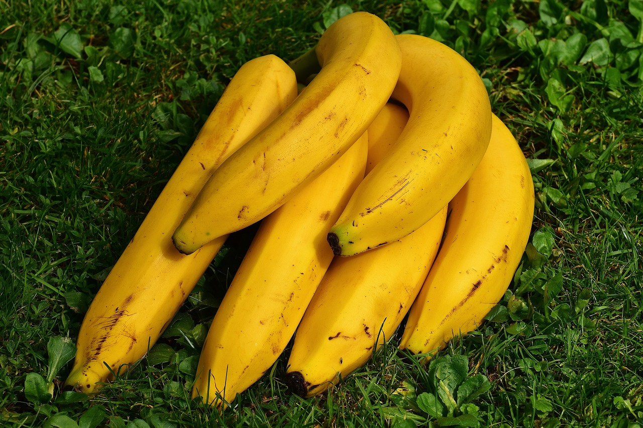 バナナは野菜か果物か?栄養や効能は?