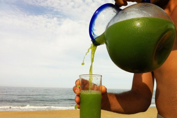 青汁は効果なし?コレステロールや血圧への影響は?青汁の選び方はどうしたら良いの?
